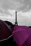 Fine Art -Paris Rising