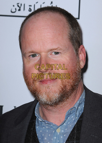 BEVERLY HILLS, CA - NOVEMBER 3:  Joss Whedon at the Equality Now &quot;Make Equality Reality&quot; Event at the Montage Hotel on November 3, 2014 in Beverly Hills, California.  <br /> CAP/MPI/PGSK<br /> &copy;PGSK/MediaPunch/Capital Pictures