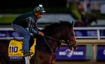 October 30, 2019: Breeders' Cup Classic entrant Yoshida, trained by William I. Mott, exercises in preparation for the Breeders' Cup World Championships at Santa Anita Park in Arcadia, California on October 30, 2019. Michael McInally/Eclipse Sportswire/Breeders' Cup/CSM