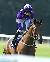 Cutting Edge ridden by Kieran Shoemark goes down to the start of The AJN Steelstock Beckie Lawrence Handicap        during Horse Racing at Salisbury Racecourse on 9th August 2020