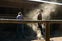 Wranglers in the stables of the YMCA of the Rockies Estes Park Center take guests on rides through neighboring Rocky Mountain National Park. The 100-year-old center is one of the gems of the YMCA system. (Kevin Moloney for the New York Times)