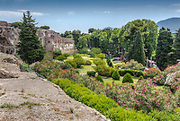 Fine Art Landscape Photograph of the architectural ruins in Pompeii, near the city of Naples, Italy.<br /> This colourful and picturesque photograph depicts the beautiful foliage that has grown back amongst ruins that remain after the destruction that occurred in Pompeii.
