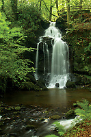 Waterfall in the Finlaystone Estate, Renfrewshire