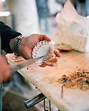 ITALY, Venice, human hand holding scallop at the Rialto Fish Market.
