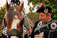 Lonach March horse,
