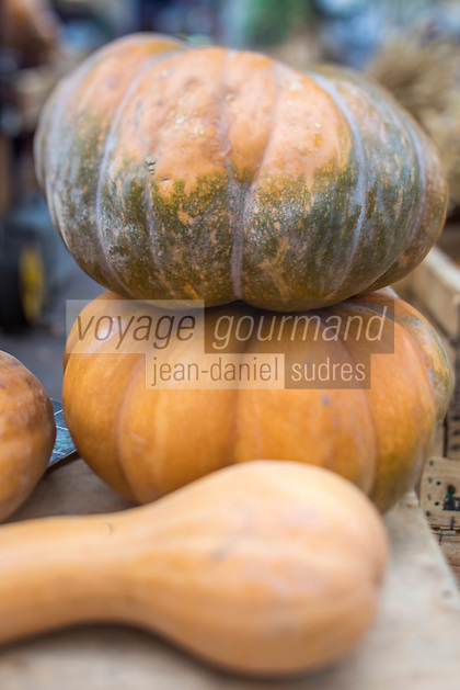 France, Bouches-du-Rhône (13), Marseille, capitale européenne de la culture 2013, marché paysan du Cours Julien, détail étalage citrouille set courges bio // France, Bouches du Rhone, Marseille, european capital of culture 2013, country market of The Julien Cours, dertail display