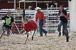 Jackson, left, and Cameron Colburn, of Fallon, compete in an emu race at the 56th annual International Camel &amp; Ostrich Races in Virginia City, Nev. on Friday, Sept. 11, 2015. <br /> Photo by Cathleen Allison