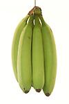 Nick Bananas Bunch