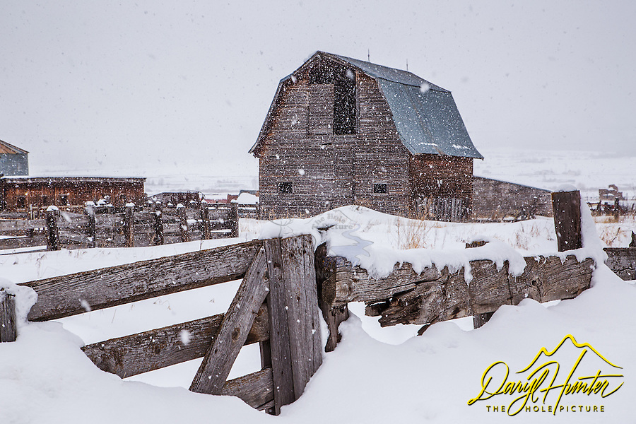 Old barn, old fence, winter, snowstorm, Freedom Wyoming