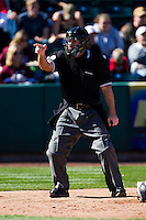 Home Plate Umpire Shane Friebe calls a strike during a game between the Southern Illinois University- Edwardsville Cougars and the Missouri State Bears at Hammons Field on March 10, 2012 in Springfield, Missouri. (David Welker / Four Seam Images).