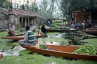 Dal lake floating vegetable market. Srinagar, Kashmir, Northern India, India