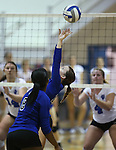 Marymount's Bri Fitzpatrick sets during a college volleyball match at Washington &amp; Lee University Lexington, Vir., on Saturday, Oct. 5, 2013.<br /> Photo by Cathleen Allison