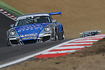 Michael Meadows - SAS Redline Racing Porsche Carrera Cup GB