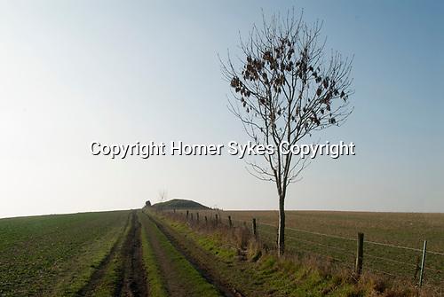 King Barrow Coneybury Hill West Amesbury Wiltshire UK 2017