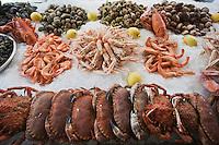Europe/France/Aquitaine/33/Gironde/Bassin d'Arcachon/Arcachon:Buffet de fruits de mer à la  Brasserie:Chez Yvette