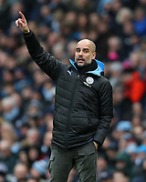 26th January 2020; Etihad Stadium, Manchester, Lancashire, England; English FA Cup Football, Manchester City versus Fulham; Manchester City manager Pep Guardiola signals to his players