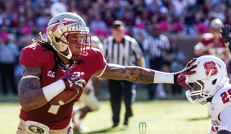 FSU wide receiver Kelvin Benjamin stiff arms NC State cornerback Jack Tocho for extra yardage on an afternoon that saw the Florida State Seminoles defeated the North Carolina State Wolfpack 49-17 in their NCAA football game  in Tallahassee, Florida.