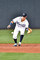 Southern Division shortstop Jose Gomez (4) of the Asheville Tourists fields the ball during the South Atlantic League All Star Game at Spirit Communications Park on June 20, 2017 in Columbia, South Carolina. The game ended in a tie 3-3 after seven innings. (Tony Farlow/Four Seam Images)