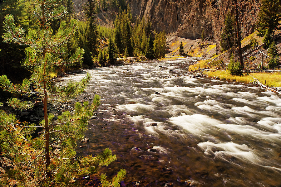 Firehole River flowing through Firehole Canyon, Yellowstone National Park, Wyoming, USA