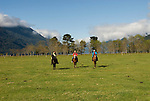 Chile, Lake Country: People riding horses at Peulla in a meadow in the Andes..Photo #: ch605-33244..Photo copyright Lee Foster www.fostertravel.com, lee@fostertravel.com, 510-549-2202.