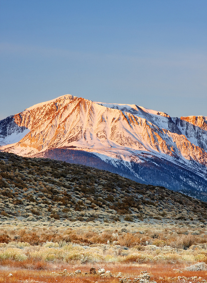 Northeast face of Mount Wood dusted with a November snowfall rising above desert valley bottom at sunrise, eastern Sierras, Mono Basin National Forest Scenic Area, near Lee Vining, California, USA