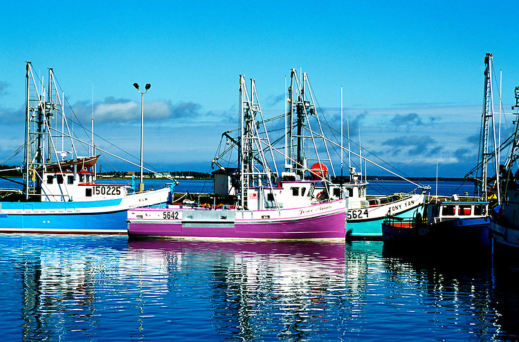 Canada, New Brunswick, fishing boats.Photo: cnbrun104.Photo Copyright: Lee Foster, 510-549-2202, lee@fostertravel.com, www.fostertravel.com