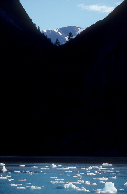 Alaska, fjords, Tracy Arm, Stephens Passage, Southeast Alaska, Inside Passage, icebergs, brash ice,
