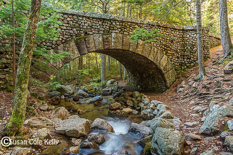 Jordan Stream and the Cobblestone Bridge in Acadia National Park, Maine, USA