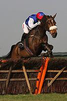 Race winner Flite ridden by Noel Fehily jumps the last in the Follow Plumpton Racecourse On Facebook Mares Handicap Hurdle