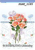 Marek, FLOWERS, BLUMEN, FLORES, photos+++++,PLMP1185,#f#, EVERYDAY ,roses