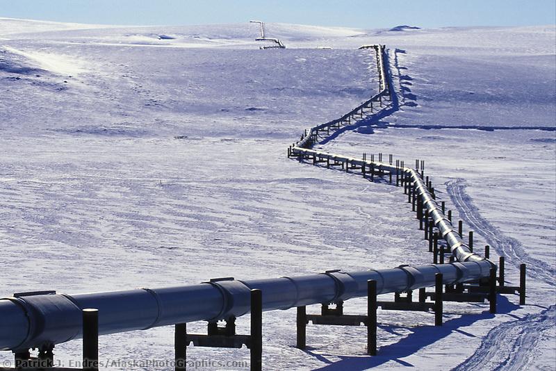 Trans Alaska Oil Pipeline, Arctic coastal plains, tundra, Arctic, Alaska