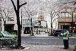 Tokyo, April 8 2011 - Ou-an by Ken Yokogawa.