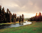 USA, Wyoming, Nez Pearce Creek landscape with trees at dusk, Yellowstone National Park