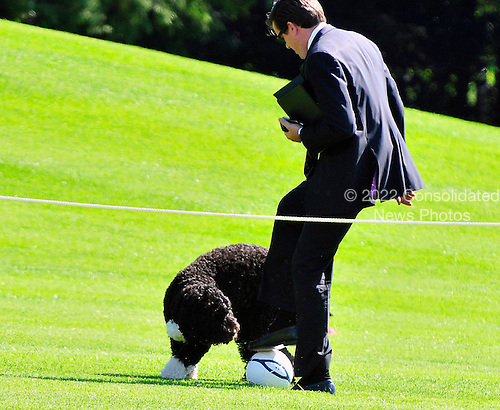 "Bo, the Obama family dog, plays Soccer with Alan Fitts, Deputy Director of Advance and Trip Director for the First Lady, on the South Lawn of the White House in Washington, D.C. prior to a ""Let's Move"" event sponsored by first lady Michelle Obama on Thursday, October 6, 2011..Credit: Ron Sachs / CNP"
