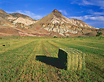 John Day Fossil Beds National Monument, OR<br /> Hay bales in a field near the Cant Ranch under the colorful rock layers of the Sheep Rock in evening light in the monuments Sheep Rock Unit