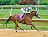 My Charming Clyde winning at Delaware Park on 7/16/16