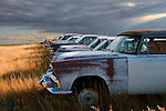 Old cars in a field