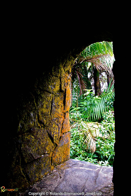 El Yunque, Puerto Rico. #landscapephotography #fotografiaopaisajes #elyunque #tropicalforest #puertorico #remmanuelli <br /> http://www.remmanuelli.com<br /> <br /> Original photographs of magnificent places, people, nature and landmarks from Puerto Rico. The images are available for download or printing at http://www.remmanuelli.com. Rolando Emmanuelli-Jiménez is a Puerto Rican attorney and photographer who specializes in Puerto Rican scenery, culture and people. He has been practicing this art since childhood and has won contest prizes and recognition for his art. Images are usually printed and shipped within 2 business days, less if expedited shipping is chosen. You will be notified via email when the order has shipped including a tracking number if already available.