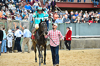HOT SPRINGS, AR - FEBRUARY 19: My Boy Jack  ,with jockey Kent Desormeaux heading to winners circle after  winning  the Southwest Stakes at Oaklawn Park on February 19, 2018 in Hot Springs, Arkansas. (Photo by Ted McClenning/Eclipse Sportswire/Getty Images)
