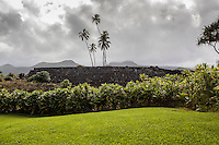 Pi'ilanihale Heiau at the Kahanu Garden near Hana, Maui.