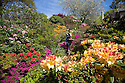 11/05/15<br /> <br /> On one of the finest day's of the year so far, Sarah Beet, tops up a bird bath surrounded by a riot of colourful blooming azaleas and rhododendrons at Lea Gardens near Matlock in the Derbyshire Peak District. <br /> <br /> All Rights Reserved: F Stop Press Ltd. +44(0)1335 418629   www.fstoppress.com.