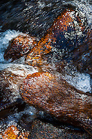 Fresh mountain water gently flowing over rocks in a Colorado mountain stream.