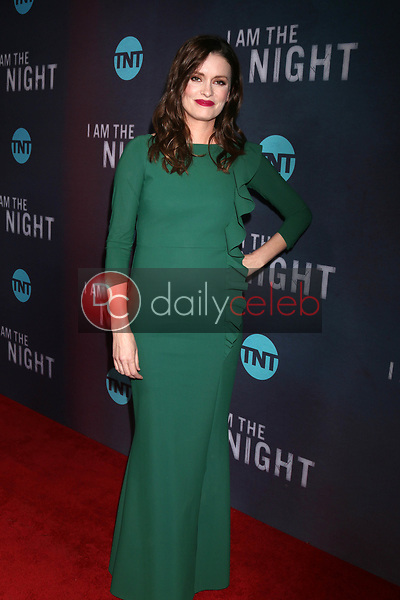"""Jamie Anne Allman<br /> at the """"I Am The Night"""" Premiere, Harmony Gold Theater, Los Angeles, CA 01-24-19<br /> David Edwards/DailyCeleb.com 818-249-4998"""