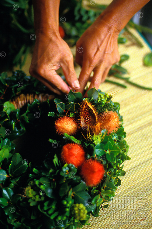 Making a christmas wreath using alaea, lipstick plant. (Bixa orellana)