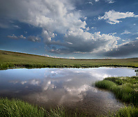 High clouds are reflected in a pond on a pasture at Kolob Terrace adjacent to Zion National Park, Utah