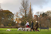 Dog-walkers on Hampstead Heath