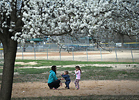 NWA Democrat-Gazette/J.T. WAMPLER Katherine Mueller plays with her children Jane (RIGHT). 3 and Michael, 2, Thursday March 22, 2018 near a pear tree in bloom at Walker Park in Fayetteville. The Muellers are visiting the area from Montana. The National Weather Service is calling for high temperatures in the 60s and 70s with a chance of rain this weekend.
