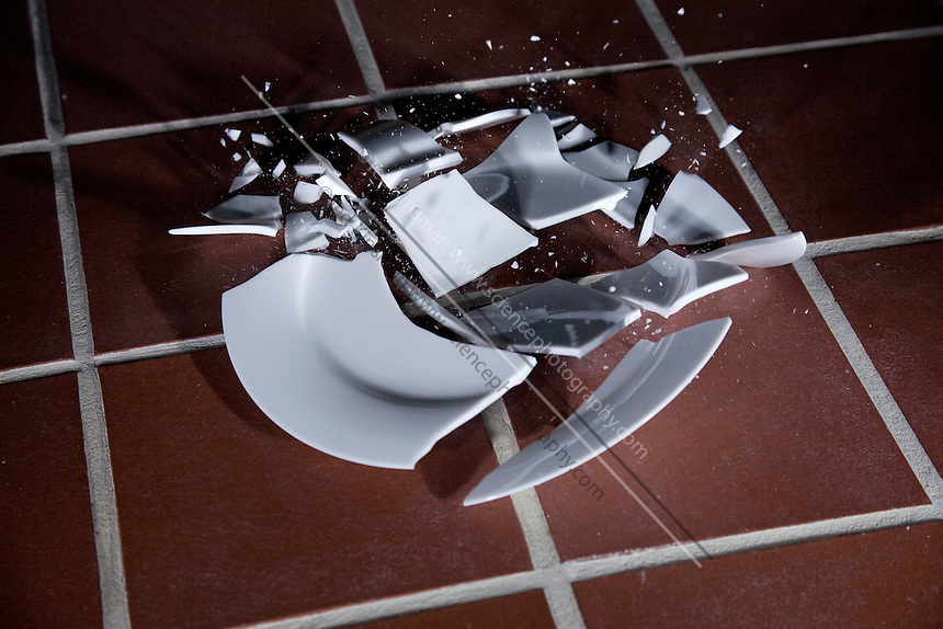 A plate breaking as it hits the floor.  Photographed with high-speed flash of a duration of 1/1,000,000th of a second.  .