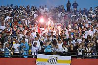 SÃO PAULO, SP, 13 DE MAIO DE 2012 - FINAL DO CAMPEONATO PAULISTA - SANTOS x GUARANI:  Torcida comemora conquista do Campeonato Paulista de 2012 após Santos x Guarani, segunda partida da final do Campeonato Paulista no Estádio do Morumbi. FOTO: LEVI BIANCO - BRAZIL PHOTO PRESS