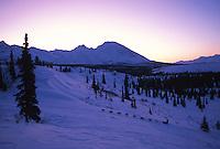 B.Raper Mushing / Rainy Pass AK / '95 Iditarod